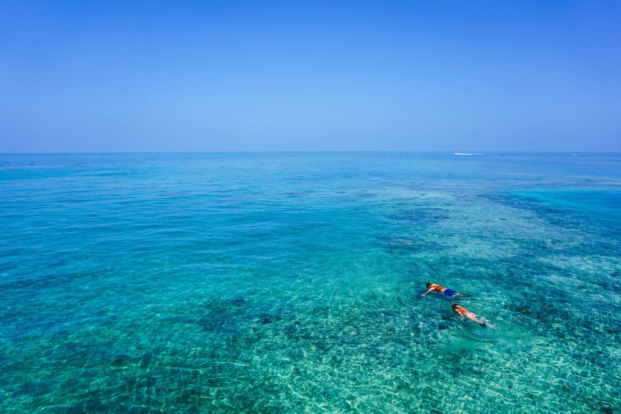 Great barrier reef tours 1