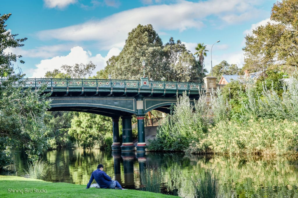 things to do in adelaide 4