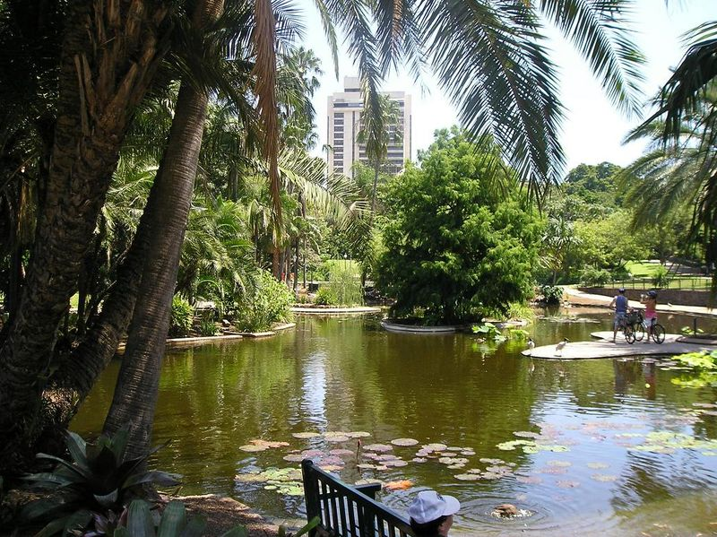 things to do in brisbane 9