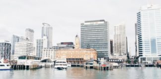 Car rental auckland
